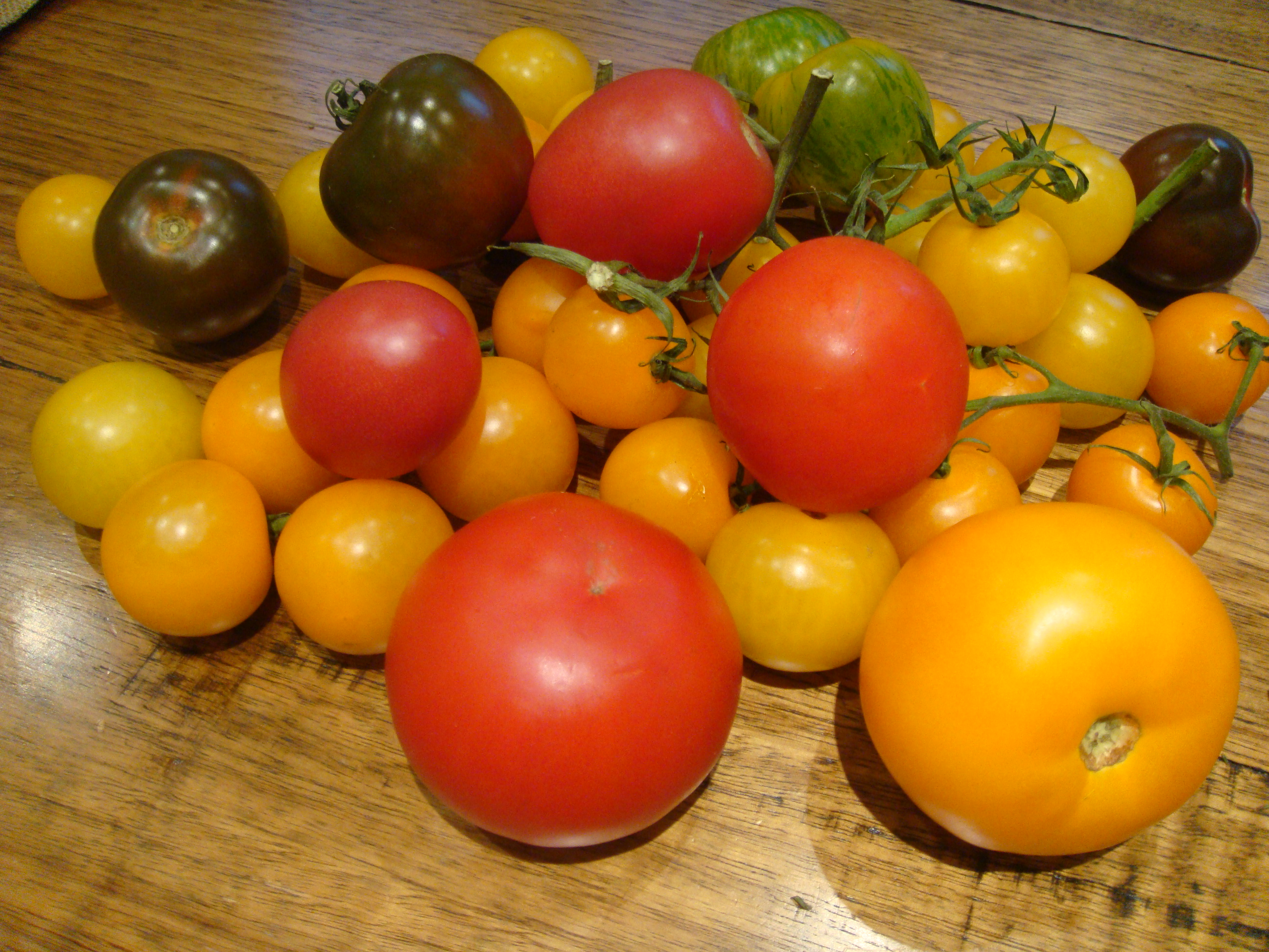 and green and brown toms too!